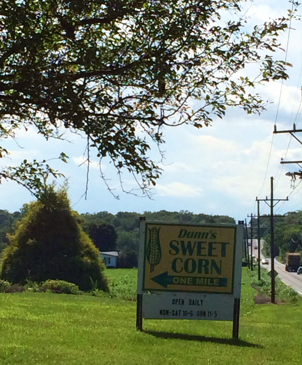 WV Sweet Corn - the 2nd Most Wonderful Time of the Year Photo